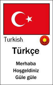 000 Turkish copy
